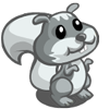 Grey Squirrel-icon