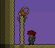 Antlion pillar