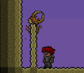 Antlion pillar.png