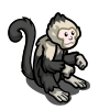 Capuchin Monkey-icon