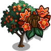 African Tulip Tree-icon