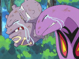 Weezing and Arbok crying