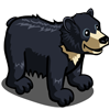 Sloth Bear-icon