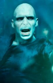 P4 Voldemort