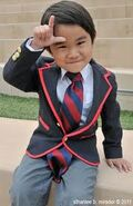 Mini Warbler