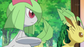 EP624 Kirlia y Leafeon de Zoe.png