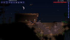 Meteorite on floating island