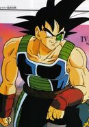 Bardock-in-dbz