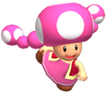 Toadette Brawl