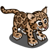Clouded Leopard-icon