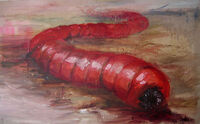 Mongolian Death Worm