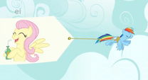 Fluttershy Banner S1E20
