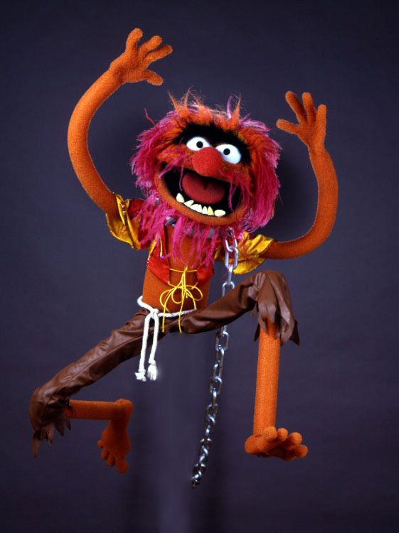 Animal - Muppet Wiki
