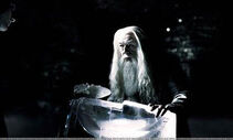 DumbledoreDrinkOFDespair