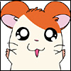 MP-hamtaro