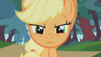 Applejack serious face2 S01E04