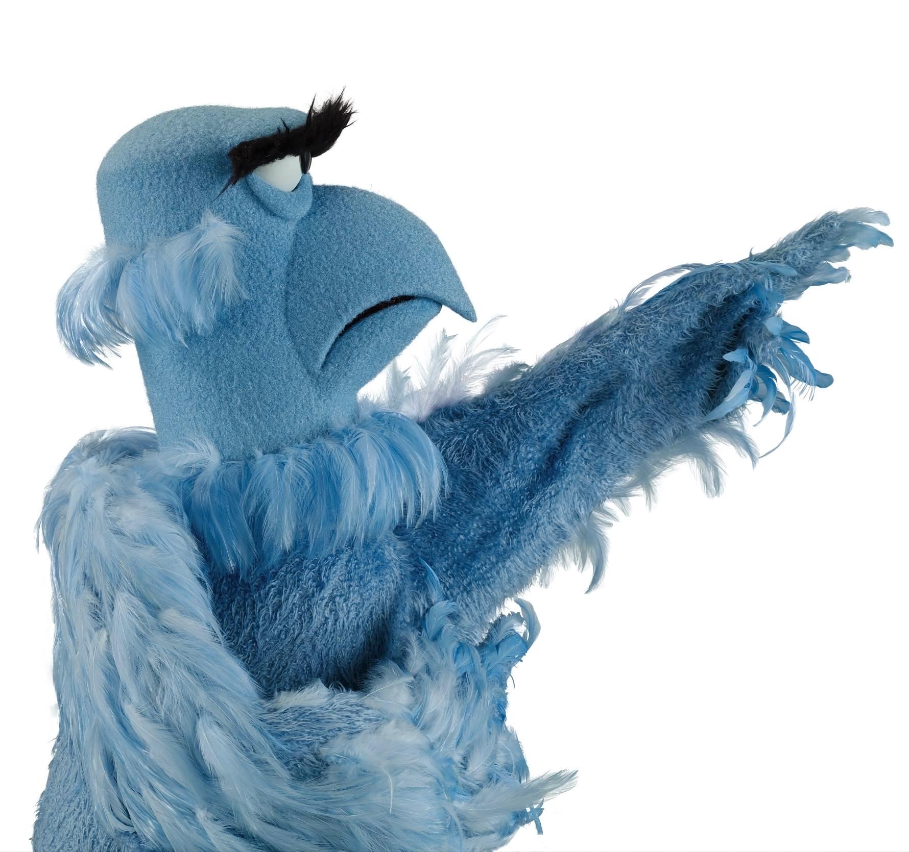 4 nose jobs trust appearance rocking sam bald eagle nose