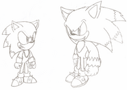 Werehog Generations