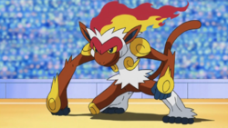 Ash Infernape