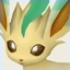 Park Leafeon