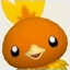 Park Torchic