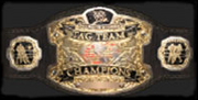 WorldTagTeambelt