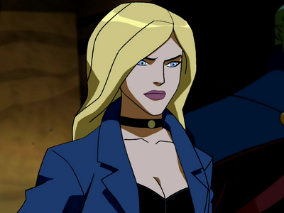 Black Canary - Young Justice Wiki: The Young Justice