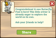Butterfly Foal Message