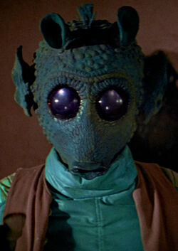 Greedo