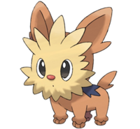 Imatge de Lillipup