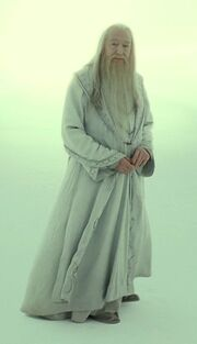 Dumbledore Limbo