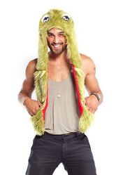 Kermit spirithoods adult