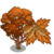 Paperbark Maple Tree-icon