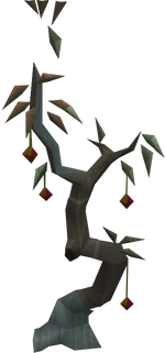 Corpsethorn tree