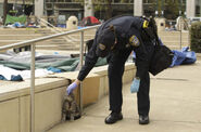 Oaklandcopcat