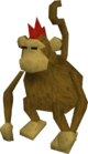 Karamja monkey