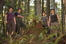 New-Stills-Breaking-Dawn-twilight-series-27009708-960-640