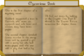 Mysterious book pt2.png