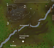 Tree Gnome Stronghold Battlefield