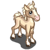 Palomino Quarter Foal-icon