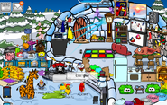 Alucard at my igloo1