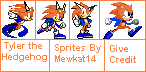 Tyler The Hedgehog Sprites by Mewkat14