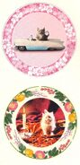Two of Umbridge&#39;s Kitten Plates