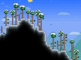 Snow Biome