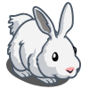 Polar Hare-icon