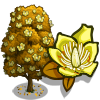 Tulip Poplar-icon