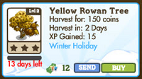 Yellow Rowan Tree Market Info
