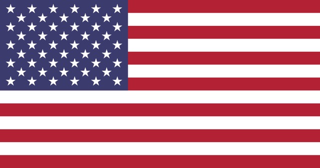 U.S Flag