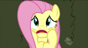 Fluttershy scared S2 E1-W 4.1263