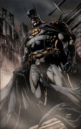 2047042-batman by fabok
